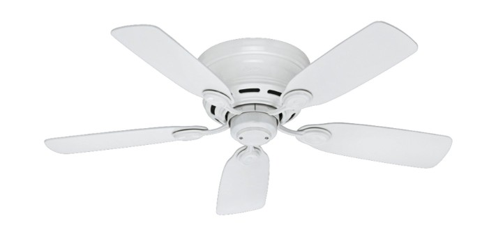 what is the light fan price