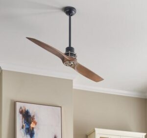 2 blade ceiling fan with light